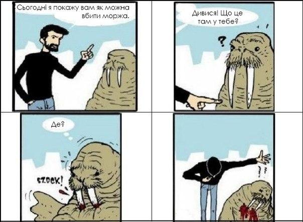 Вбиває моржів поглядом