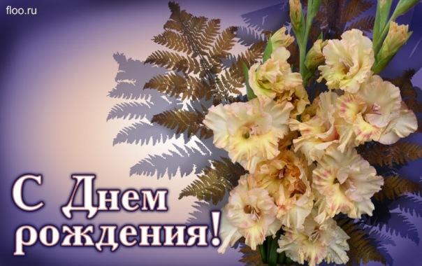 http://cs10948.vkontakte.ru/u4205195/118123959/x_c273700c.jpg