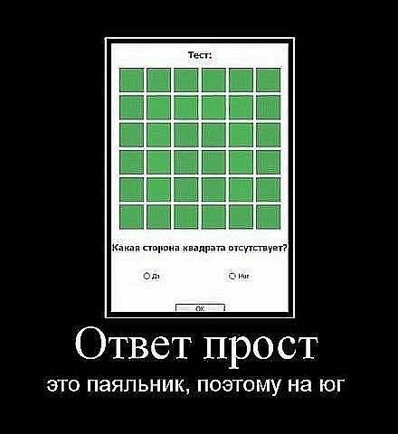 x_bfea1ed4.jpg