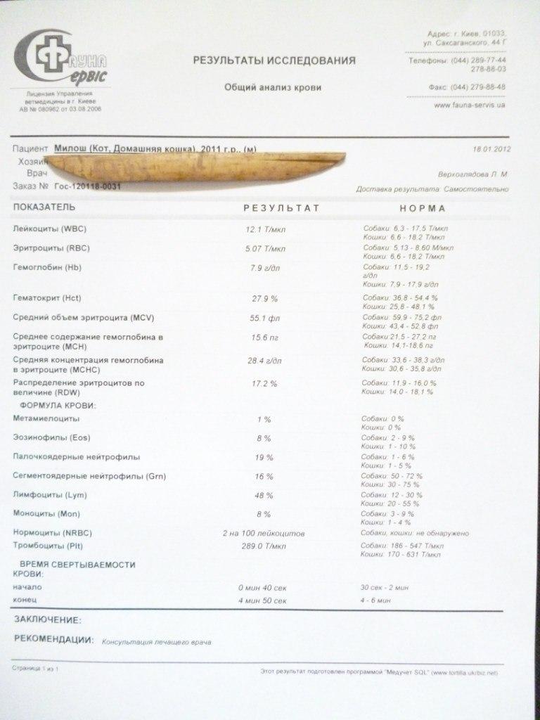 Копрограмма Йодофильная Флора