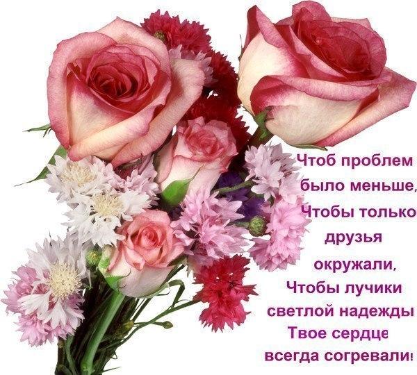 http://cs10960.userapi.com/v10960729/667/LvWlBiYkktU.jpg