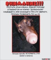 Сергей Долбоносик, 21 июля 1981, Москва, id107653877