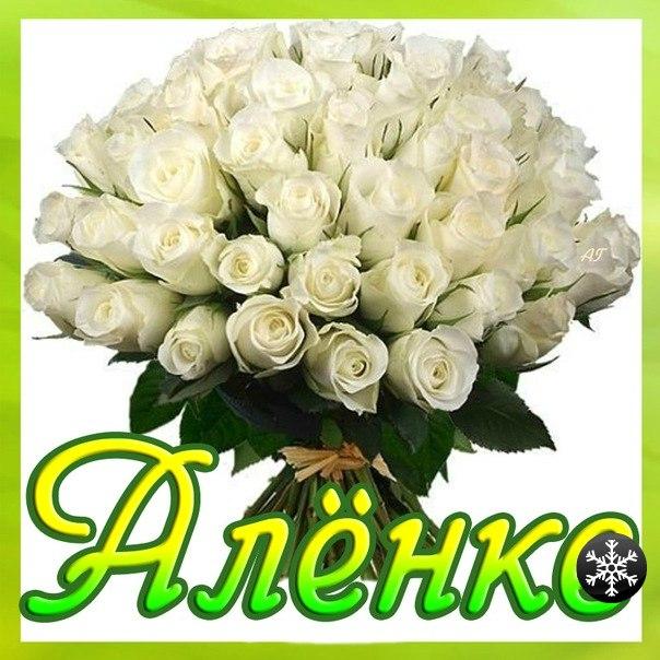 http://cs10992.userapi.com/u70292334/-5/x_9cc9ac17.jpg
