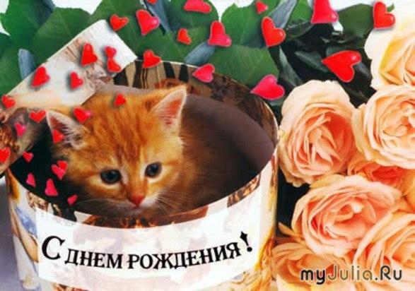 http://cs10995.userapi.com/u150991179/-14/x_6fd2e740.jpg