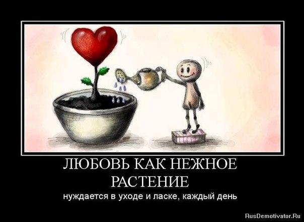 Хотеть недостаточно, надо действовать | ВКонтакте