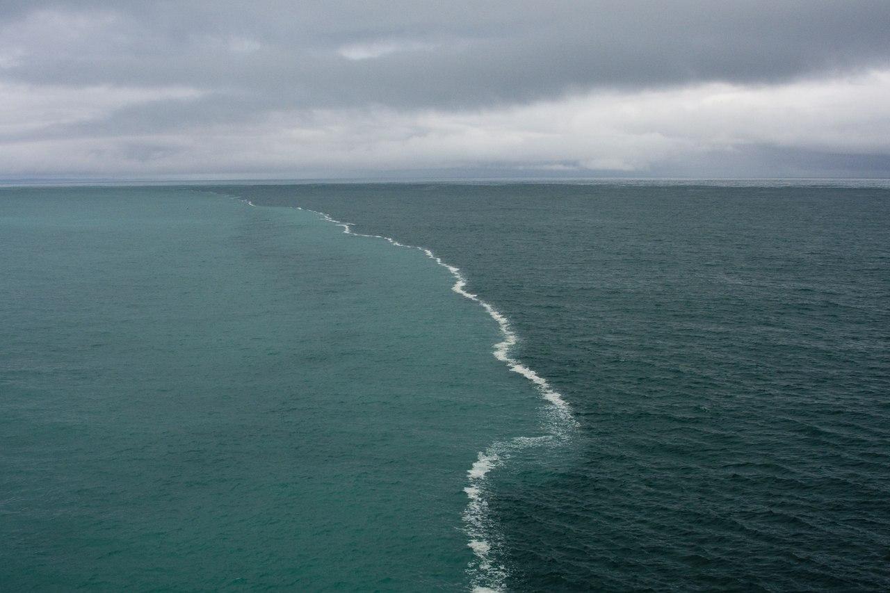 где увидеть балтийское море Хабаровске ежедневно остаются