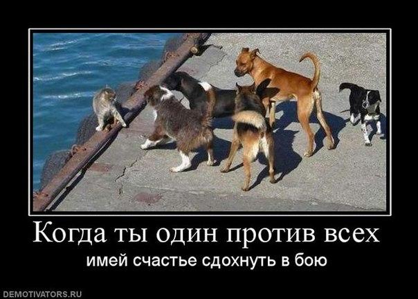 golaya-russkaya-zhena-dlya-video
