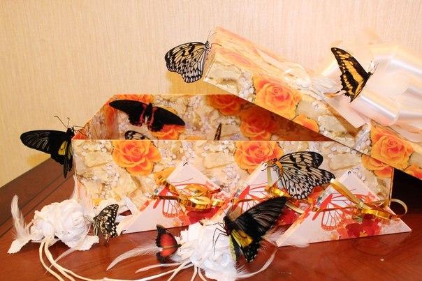 бабочки в коробке подарок