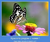 Тетяна Шостаківська, 11 сентября , Ивано-Франковск, id49508181