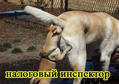 РЕЛАКСАЦИЯ))))) - Страница 5 X_3fc1ccd7