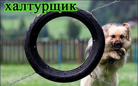 РЕЛАКСАЦИЯ))))) - Страница 5 X_caca1829