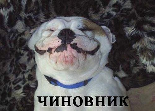 РЕЛАКСАЦИЯ))))) - Страница 5 X_d1cdc911