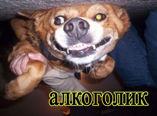 РЕЛАКСАЦИЯ))))) - Страница 5 Y_08707e83