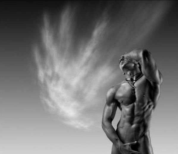 Красивые, фигуристые, мускулистые мужчины жеребцы, которые умеют следить за