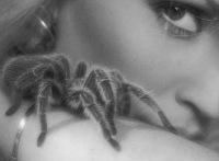 """Авторы.  Вышивка крестом.  Схемы автора  """"irada68 """".  Схема вышивки  """"Девушка с тарантулом """".  Оригинал."""