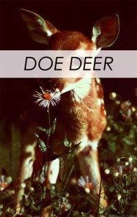Doe Deer, 20 августа , Бердянск, id172845443