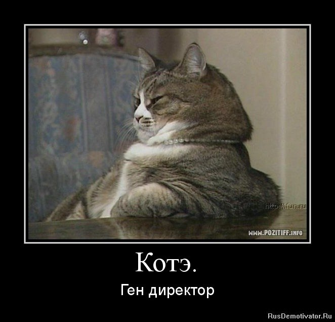Вот это мария иващенко секс фото содействии встречались
