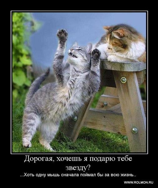 Не знаю как у тебя, но у меня все хорошо!!! | ВКонтакте