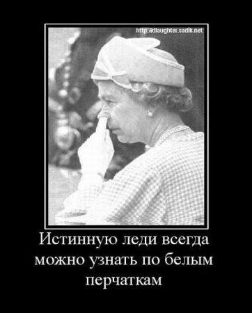 Подставка фото к музыке Неотеническую Культурную Республику
