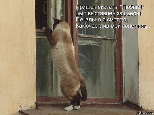 http://cs11074.vkontakte.ru/u14627555/129968184/x_33850bd3.jpg