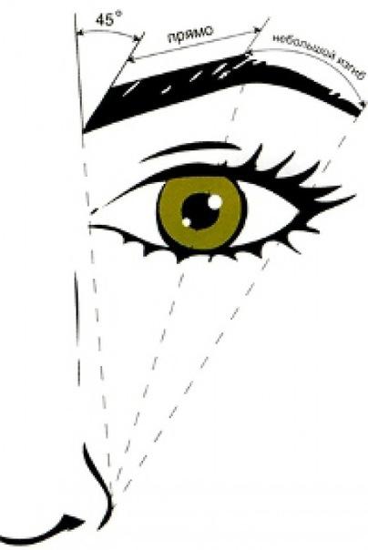 Брови выделяют ворожение вашего лица.  Брови символизирует славу, а зона вокруг бровей - репутацию, место в.