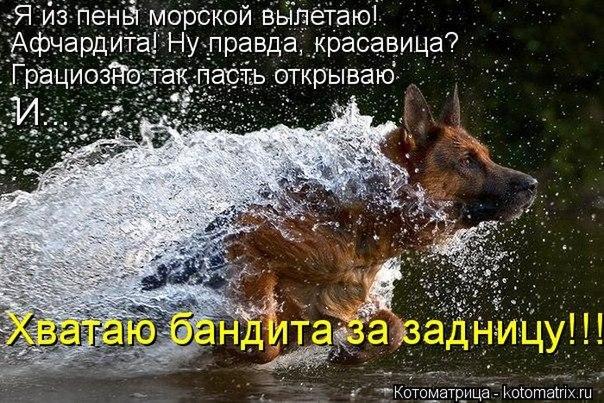 РЕЛАКСАЦИЯ))))) - Страница 5 CygI3TzF94E