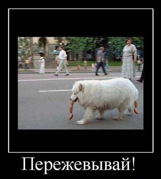 РЕЛАКСАЦИЯ))))) - Страница 5 CqDAa-oDQ2g