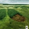Народный сход в защиту Бутовского леса