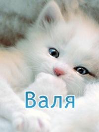 Валентина Черношей, 28 января , Хабаровск, id120833296