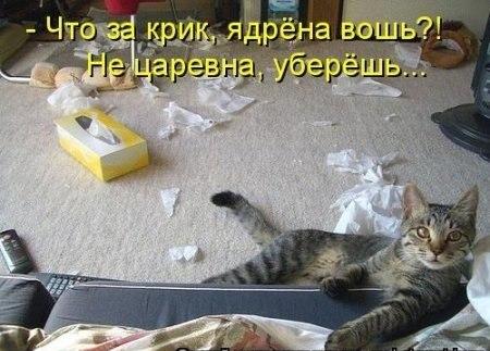 РЕЛАКСАЦИЯ))))) - Страница 4 TUON9FWFd34