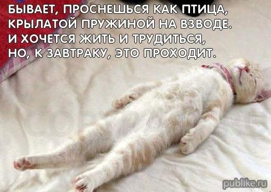 РЕЛАКСАЦИЯ))))) - Страница 4 OF6_E7GZrNc