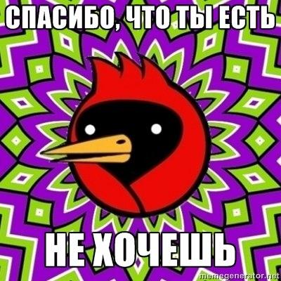 http://cs11098.vk.me/v11098248/8e5/1J5nDcCozEY.jpg