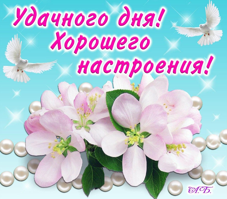 http://cs11105.vk.me/u13961231/153484571/z_92a9b4d4.jpg