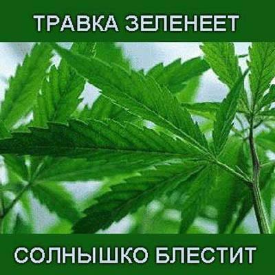 Саня Никанов | Сергиев Посад
