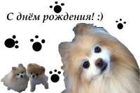 Buddy Dog, 1 апреля , Чита, id166387178