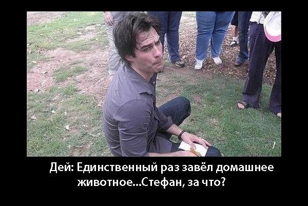 http://cs11115.vkontakte.ru/u90846081/128648294/x_6d8d8a16.jpg