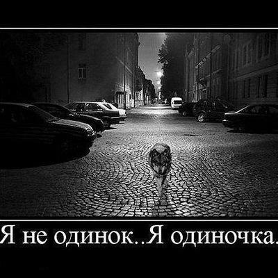 Алексей Фоничев, 18 декабря 1993, Москва, id149693187