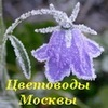 Цветоводы Москвы