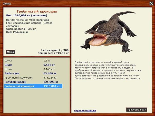 русская рыбалка 399 клевалка