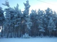 Каракум Каракум, 3 марта , Новохоперск, id121190528