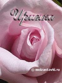 Ирина Решетняк, Навля, id104576798