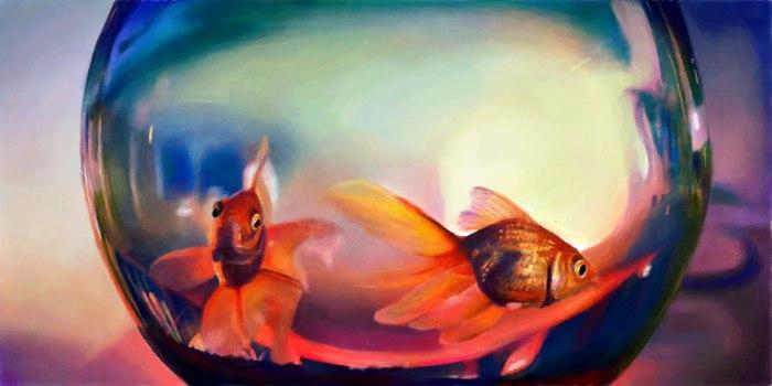 Живое граффити дня золотая рыбка