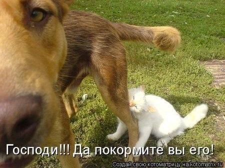 РЕЛАКСАЦИЯ))))) - Страница 5 VoTrAN-fb5E