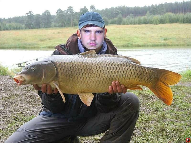хорошо ловишь рыбу