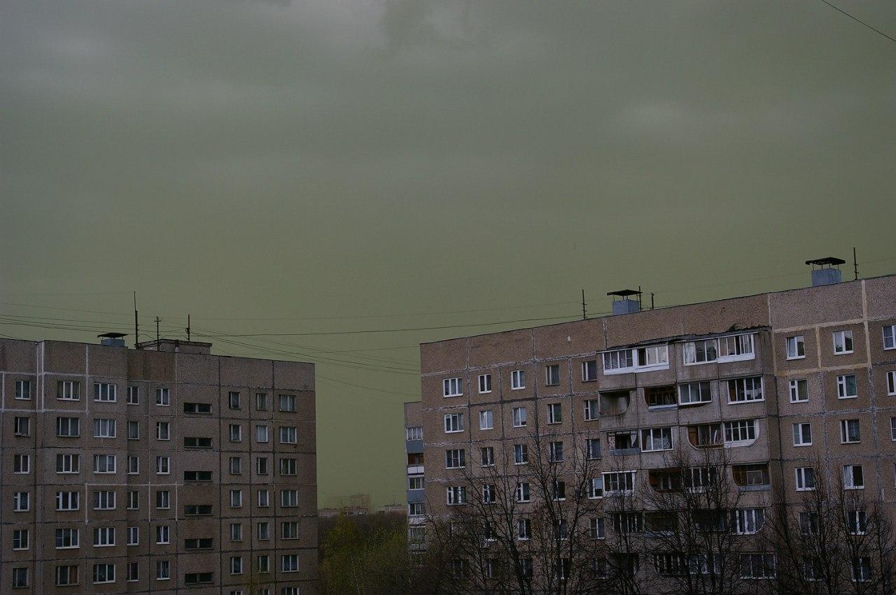 Зеленые облака пыльцы над московским регионом