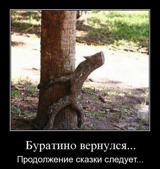 http://cs11158.userapi.com/v11158991/780/3MO4YdeeQgE.jpg