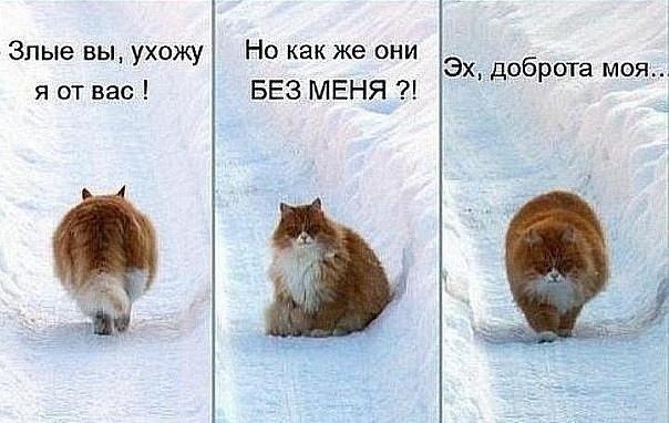 http://cs11176.vkontakte.ru/u139035157/-14/x_bcd3669d.jpg