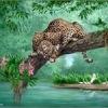 Мир животных, интересная информация про их, и приколы