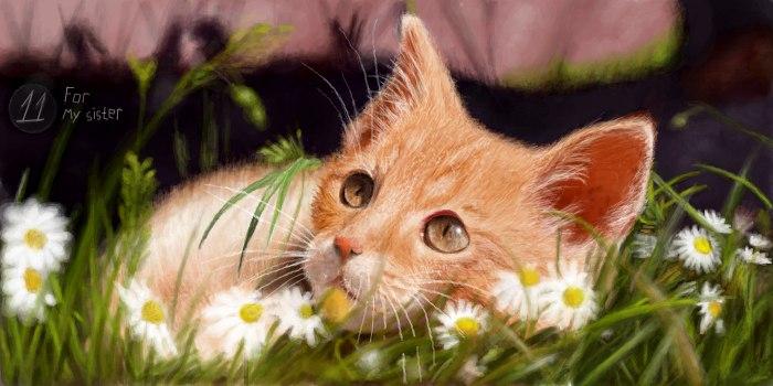 Живое граффити котик на травке