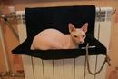 Фотография 2. Меховые гамаки для кошек на батареи - фотография 2.